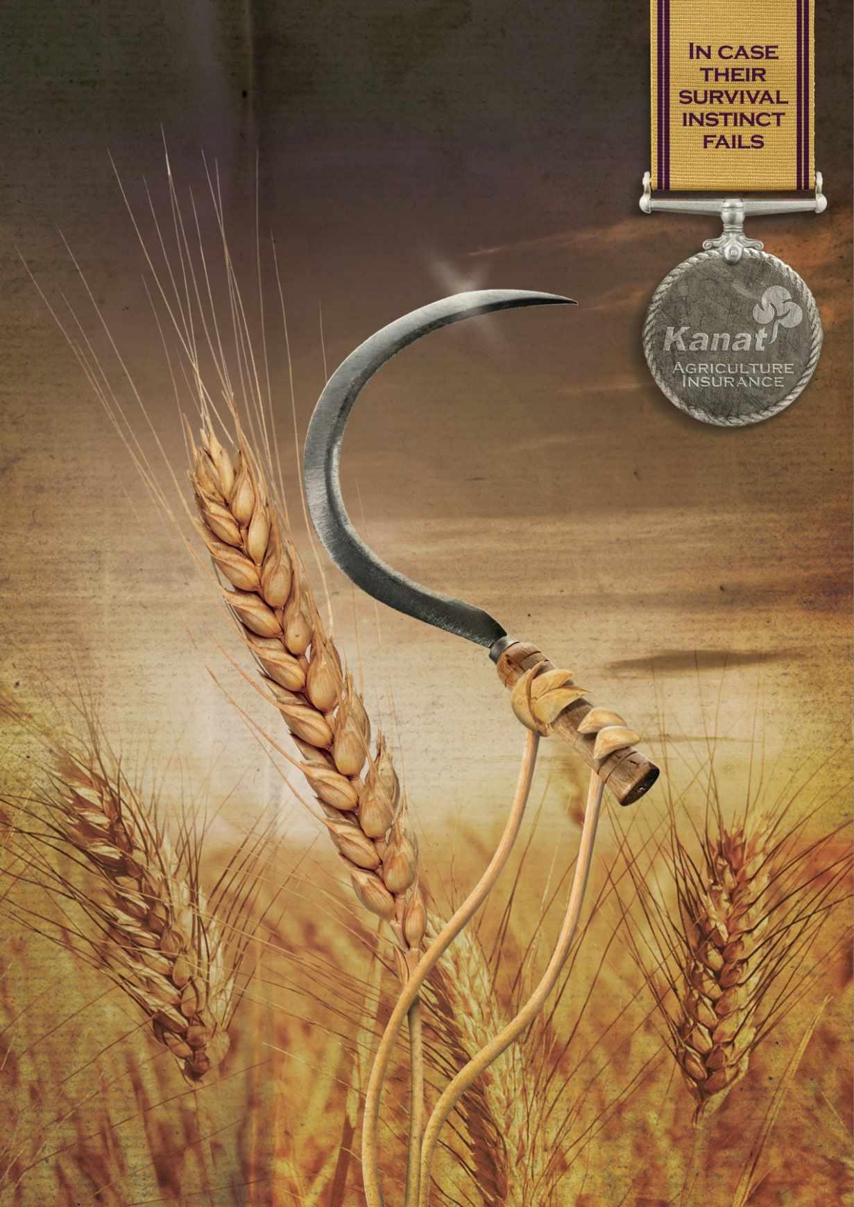 Kanat 农业保险平面创意广告设计小麦篇-上海尚略广告设计公司平面广告分享