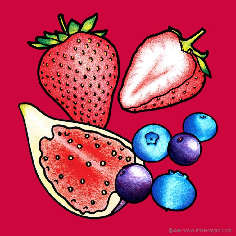 Figgin' Fruit 无花果饼干包装设计船长人物水果插画设计篇-上海食品包装设计公司7