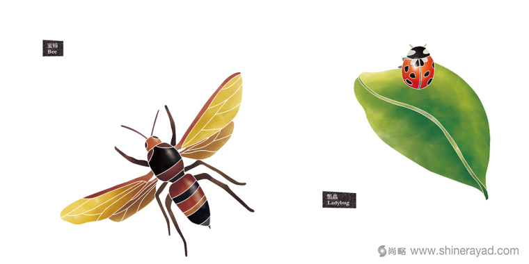 Rosehill 面膜包装插画设计-淡凉兰花 蜜蜂-上海化妆品包装设计公司7