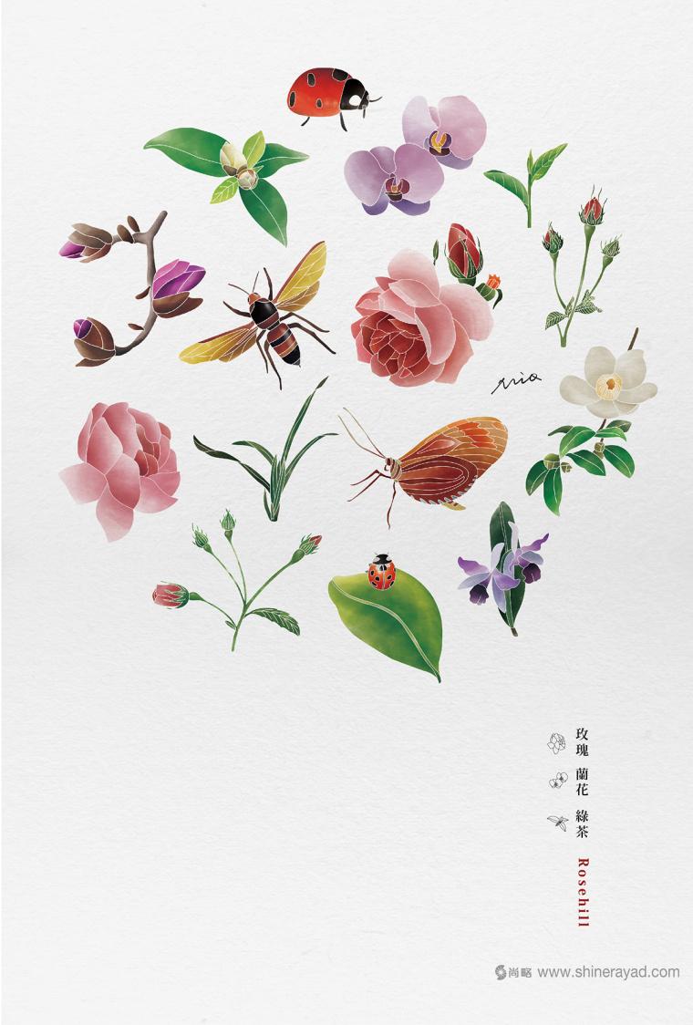 Rosehill 面膜包装插画设计-上海化妆品包装设计公司4