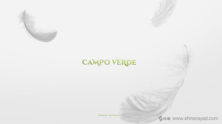 Campo Verde 鸡蛋农场logo设计VI设计-上海logo设计公司1
