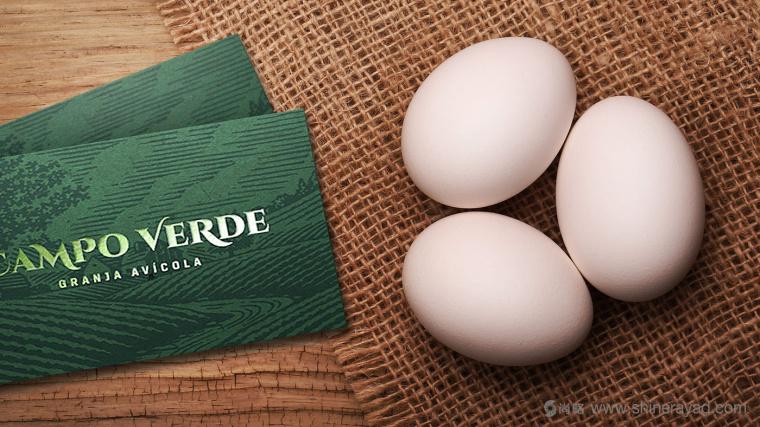 Campo Verde 鸡蛋农场logo设计VI设计-上海logo设计公司3