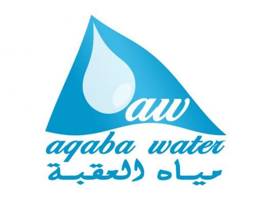 水标志设计图片-水滴和旗帜结合的水务公司标志设计