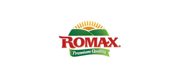 创意太阳logo设计灵感-Romax农场Logo