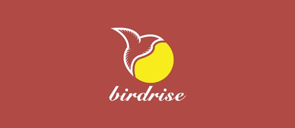 创意太阳logo设计灵感-Bird Rise太阳+鸟logo