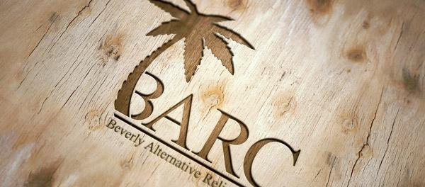 贝弗利替代救济中心棕榈树logo-上海logo设计公司-上海品牌设计公司
