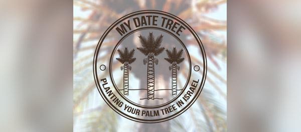 我的日期树棕榈树logo-上海logo设计公司-上海品牌设计公司