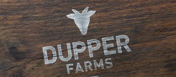 双倍农场山羊标志设计-上海标志设计公司