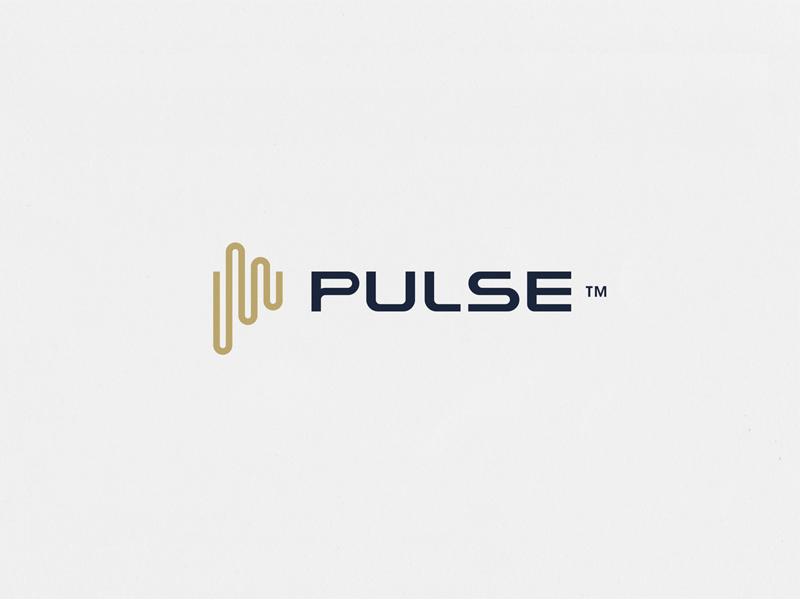 WIP Pulse银行Logo设计-上海标志设计公司