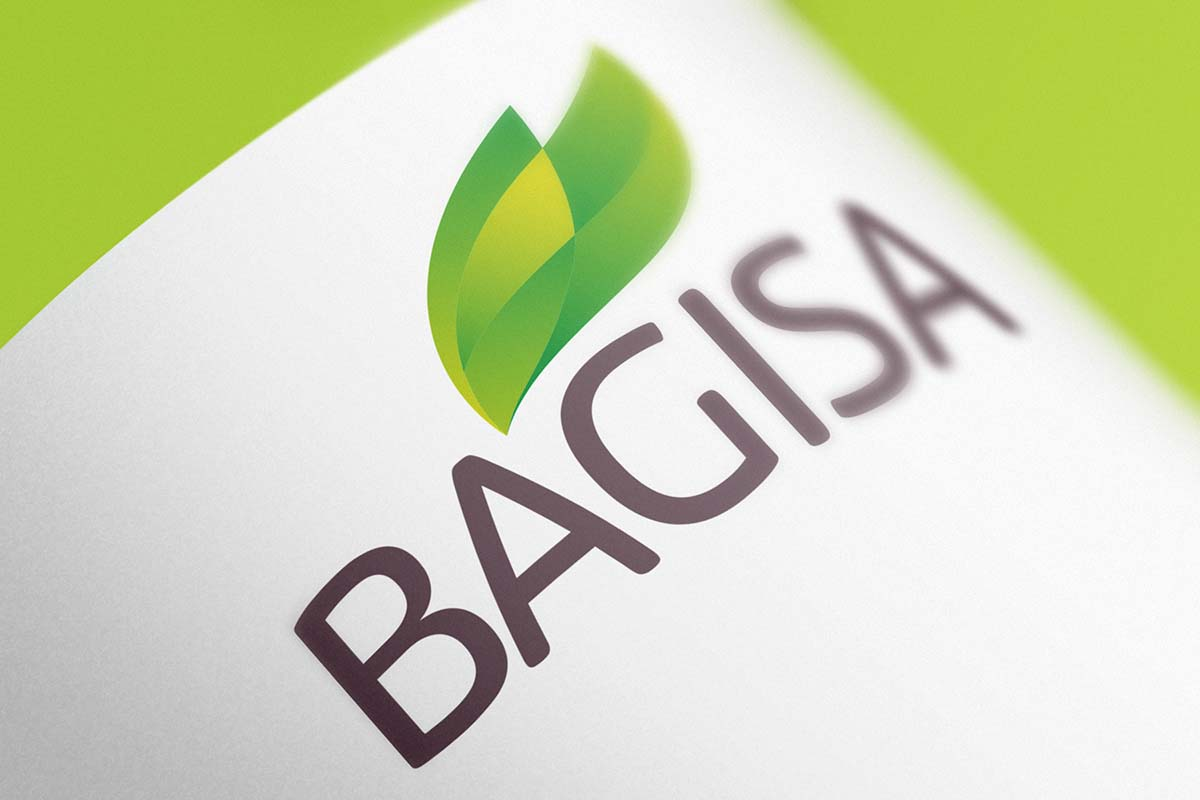 Bagisa 农业品牌形象更新设计-logo设计