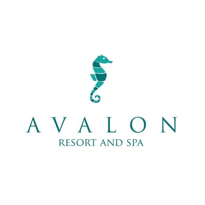 由sonjablue设计公司设计的经典和优雅的衬线字体的logo