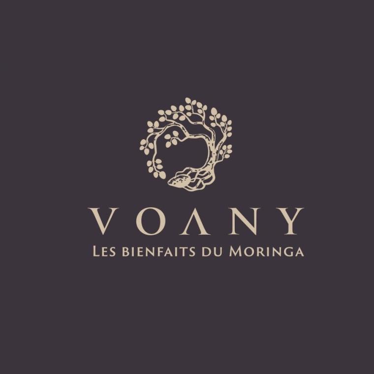 由vraione设计公司设计的经典和优雅的标志设计