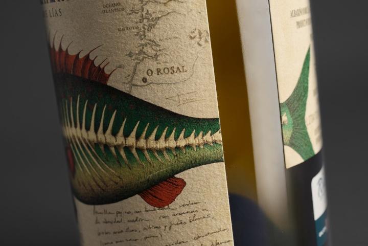 Albariño 葡萄酒包装设计,复古的鱼插画标签风格