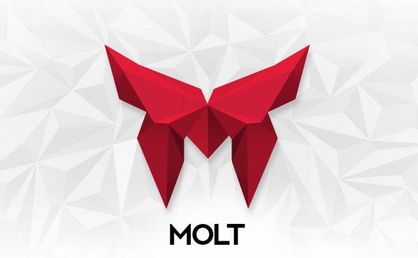 MOLT蜕变企业VI形象设计-标识logo设计