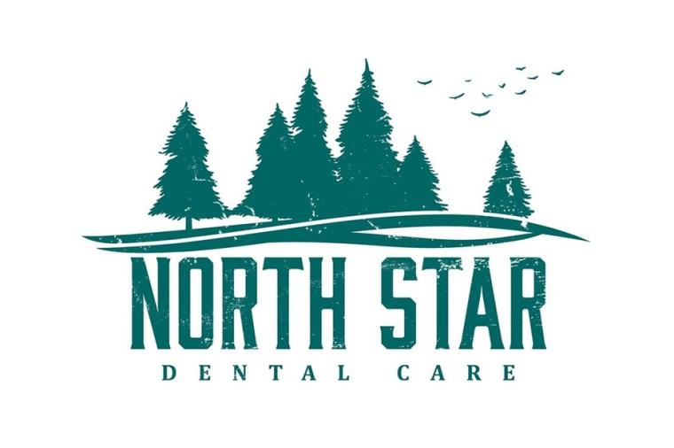 北极星牙科护理标志logo设计