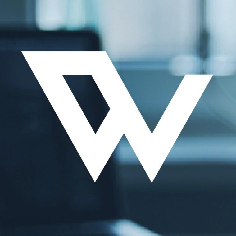 神秘的酷标志设计-类似于W的抽象形状的标志设计