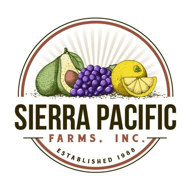 大胆的对比色会徽logo设计-鳄梨,葡萄和柠檬彼此相邻,带有文字的徽标logo