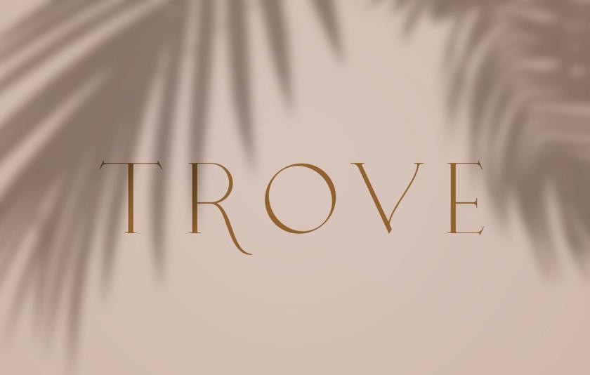 Trove 家具品牌logo设计-字体设计