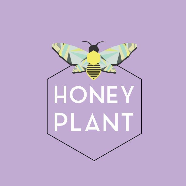 """六角形徽标logo设计——蜜蜂形象和文本""""蜂蜜植物"""""""