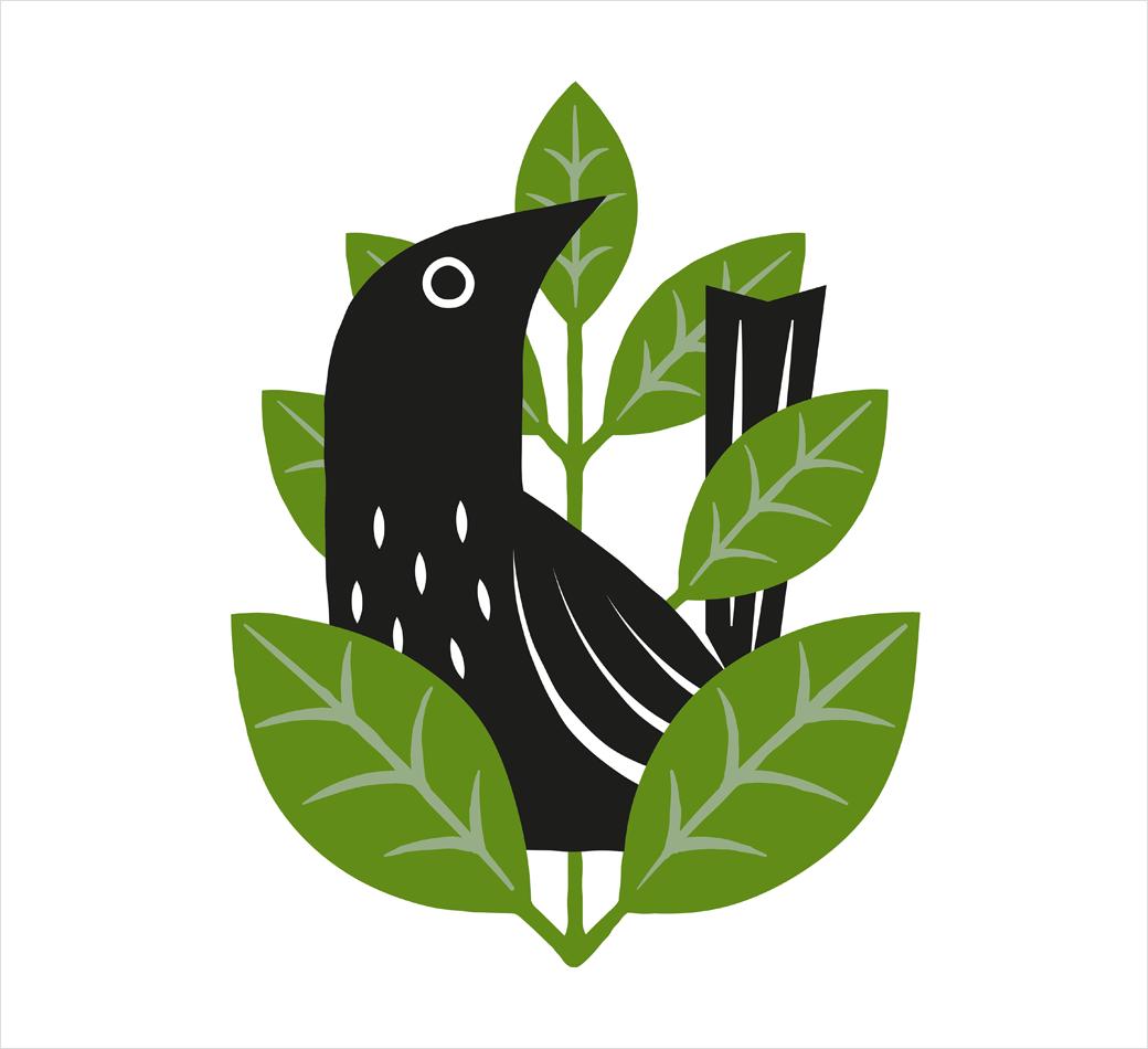 Mockingbird 知更鸟果汁品牌策划、logo设计与包装设计