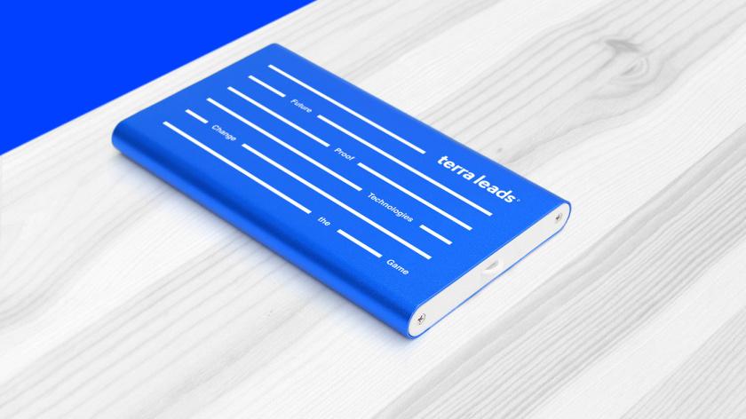 Terra Leads 注册会计师互联网平台网站品牌形象logo设计vi设计-品牌礼品,变化的垂直线条