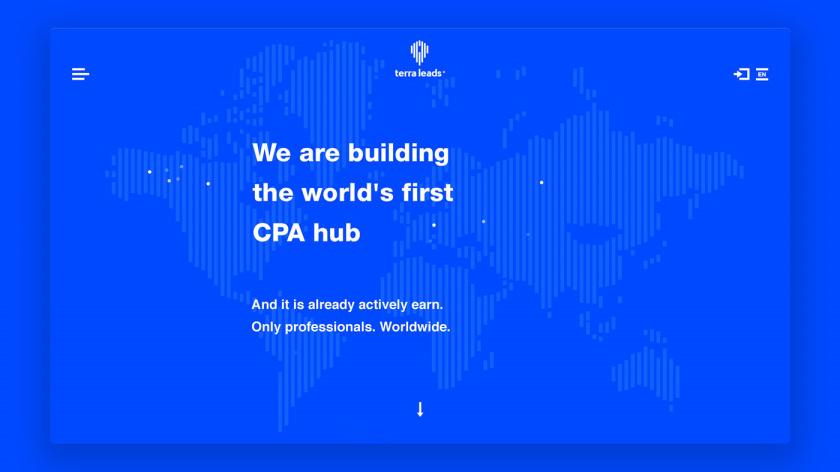 Terra Leads 注册会计师互联网平台网站品牌形象vi设计网站设计,变化的垂直线条