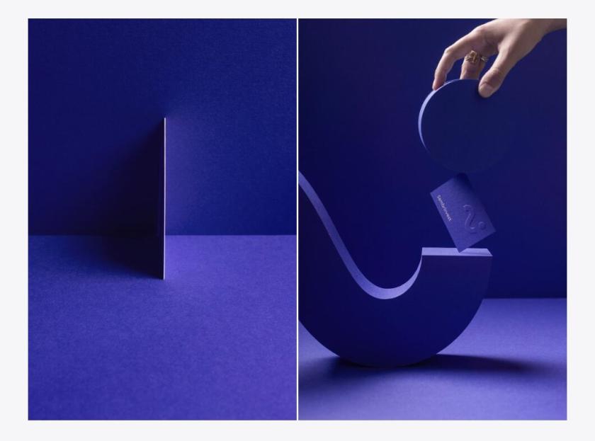 Sambrinvest 金融集团公司logo设计品牌形象vi设计,单色简约而又艺术的风格