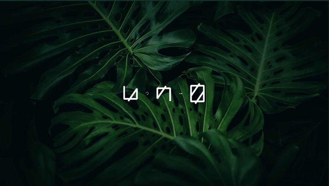 Leo Accioly 高质量摄影公司品牌识别设计logo设计