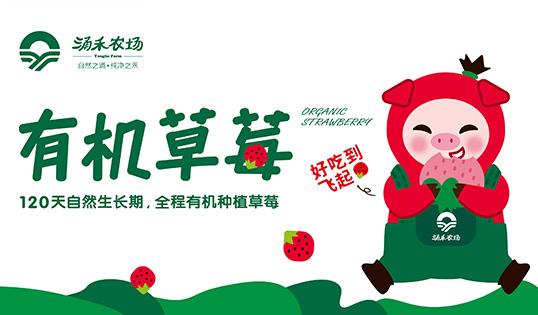 """涌禾农场有机草莓品牌全案策划""""草莓猪""""IP吉祥物设计"""