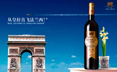 """皇轩红酒""""直飞法兰西""""促销策划与推广策划"""