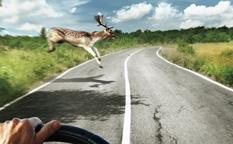 百适通刹车油润滑油海报广告创意万博网页版手机登录-上海广告创意万博网页版手机登录公司
