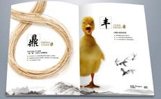 实则硬小微企业金融服务企业宣传画册设计-上海宣传册设计公司