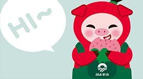 涌禾农场有机草莓IP万博安卓版万博手机APP
