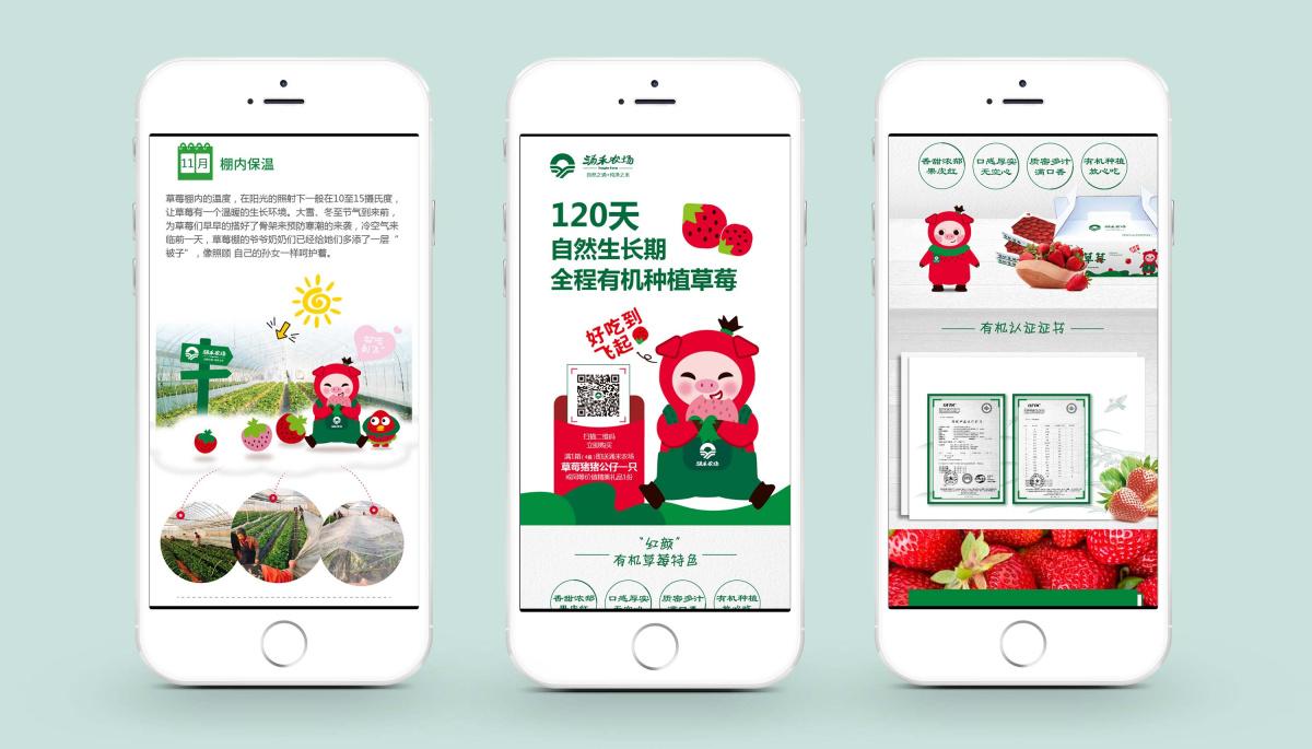 涌禾农场有机草莓微信落地页面设计