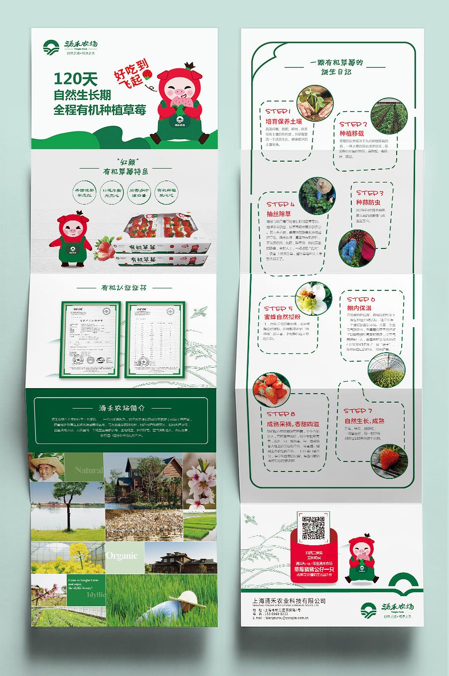 涌禾农场有机草莓宣传折页设计