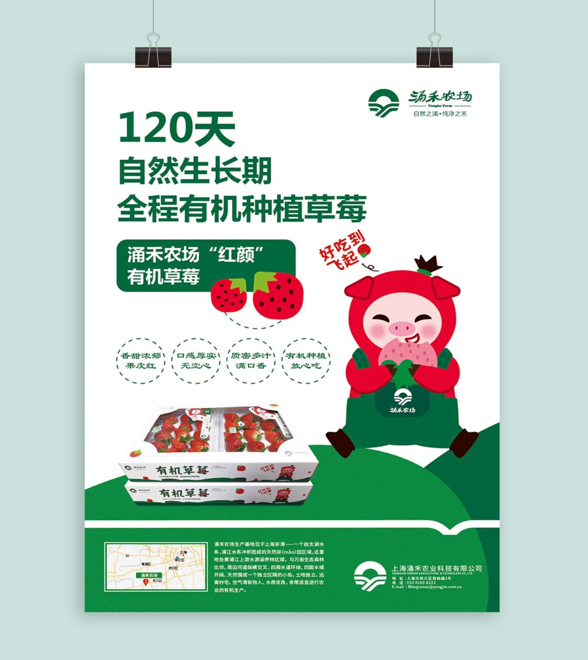 涌禾农场有机草莓海报设计