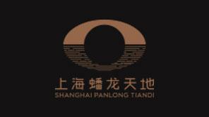 上海蟠龙天地基础要素视觉系统