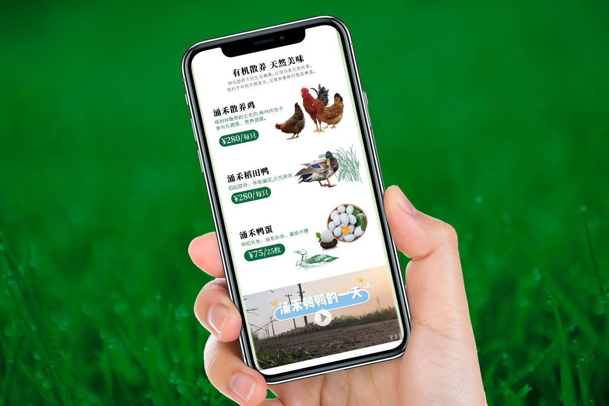 涌禾农场农产品有赞手机商城fun88体育手机fun88乐天使备用