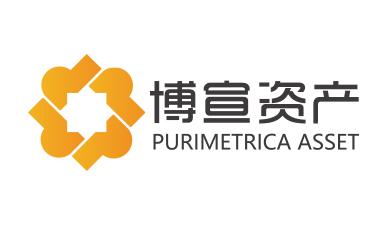 博宣投资管理公司logo设计提案